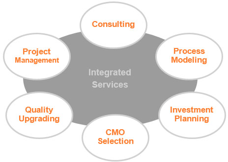 process modelling, investment planning,  CMO selection/audits, quality upgrading, supply chain implementation, engineering, design, and building facilities